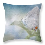Little Grey Hairstreak Throw Pillow