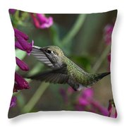 Little Happy Wings  Throw Pillow