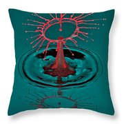 Little Hat On Top Throw Pillow by Susan Candelario