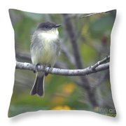 Little Lady Eastern Kingbird Throw Pillow