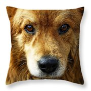 Little Lady  Throw Pillow