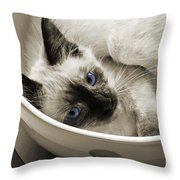 Little Miss Blue Eyes B W Throw Pillow by Andee Design