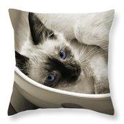 Little Miss Blue Eyes B W Throw Pillow
