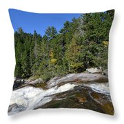 Little Niagara 5295 Throw Pillow