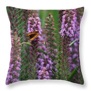 Little Orange And Black Butterfly Throw Pillow