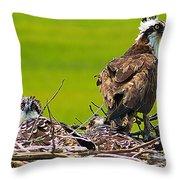 Little Osprey Throw Pillow