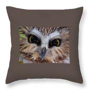 Little Owls Throw Pillow