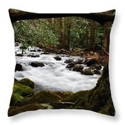 Little Pigeon River In The Smokies Throw Pillow