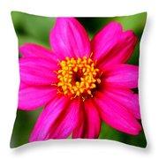 Little Pinky Throw Pillow
