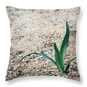 Little Plant Throw Pillow