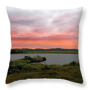 Little Pond Near The Ocean Panorama Throw Pillow