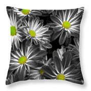 Little Rays Of Sunshine Throw Pillow