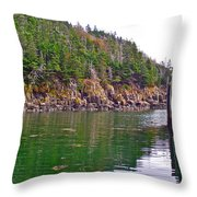 Little River In Digby Neck-ns Throw Pillow