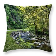 Little River Road Throw Pillow