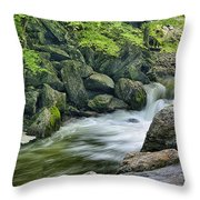 Little River Scenery E226 Throw Pillow