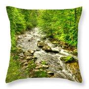 Little River - Smoky Mountains Throw Pillow