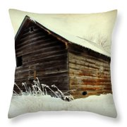 Little Shed Throw Pillow by Julie Hamilton