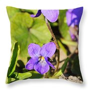 Little Shine Throw Pillow