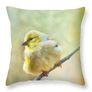 Little Softie Gold Finch - Digital Paint Throw Pillow