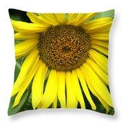 Little Sunshine Throw Pillow