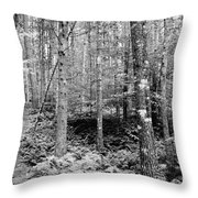 Little Trail Throw Pillow