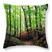 Little Valley 2 Throw Pillow