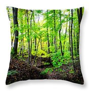 Little Valley 3 Throw Pillow