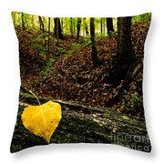 Little Valley 4 Throw Pillow