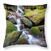 Little Waterfall In Marlay Park Throw Pillow