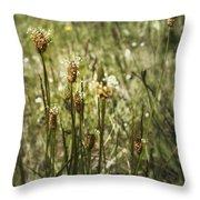 Little Weeds Throw Pillow