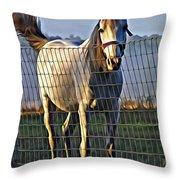 Little White Pony Throw Pillow