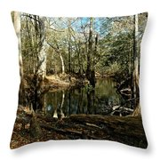 Little Withlacoochee River Throw Pillow