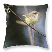 Little Yellow Bird In The Glades Throw Pillow