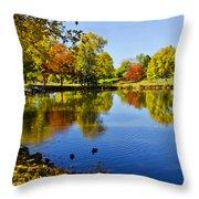 Littleton Pond 1 Throw Pillow