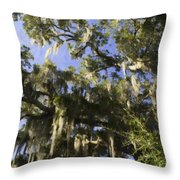 Live Oak Dripping With Spanish Moss Throw Pillow