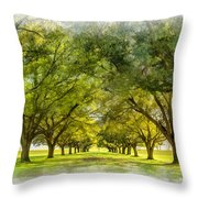 Live Oak Journey Paint Throw Pillow