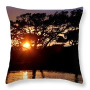 Live Oak Silhouette Throw Pillow