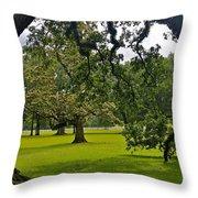 Live Oak Tree At Oak Alley Plantation Throw Pillow