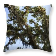 Live Oak Tree With Moss Throw Pillow
