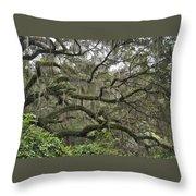 Live Oaks And Spanish Moss B Throw Pillow