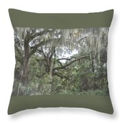 Live Oaks And Spanish Moss C Throw Pillow