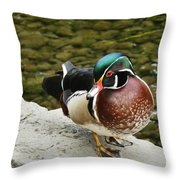 Live Pond Ornament Throw Pillow