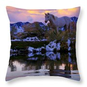 Live The Dream  Throw Pillow by Jeanne  Bencich-Nations