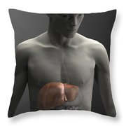 Liver Male Throw Pillow