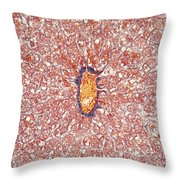 Liver Tissue Of A Cat Lm Throw Pillow