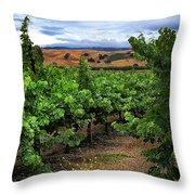 Livermore Vineyard 1 Throw Pillow