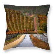 Livermore Vineyard 2 Throw Pillow