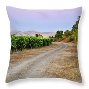 Livermore Vineyard 3 Throw Pillow