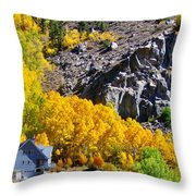 Living Among The Aspens Throw Pillow