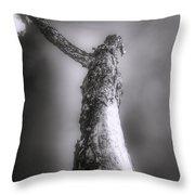 Living Dead Tree - Spooky - Eerie Throw Pillow